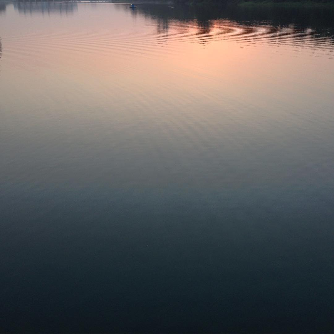 Blush of the waters  #ombré #hues #shadows #nature #Singapore #punggol