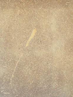 Revêtement mural terre-paille