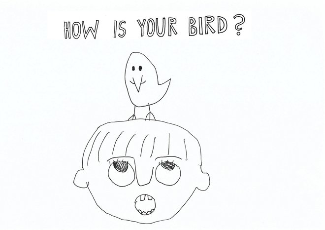 How is your bird?