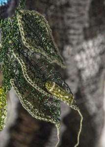 Ulysses Butterfly caterpillar