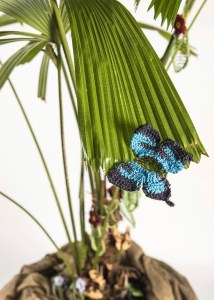 Ulysses Butterfly in Fan Palm