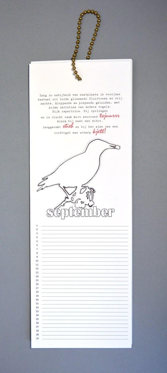 vogelkalender_september