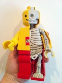 A ANATOMIA DE LEGO MAN