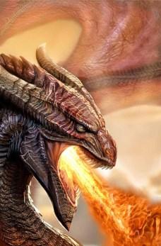 dragon_41