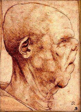 Grotesque Head Da Vinci