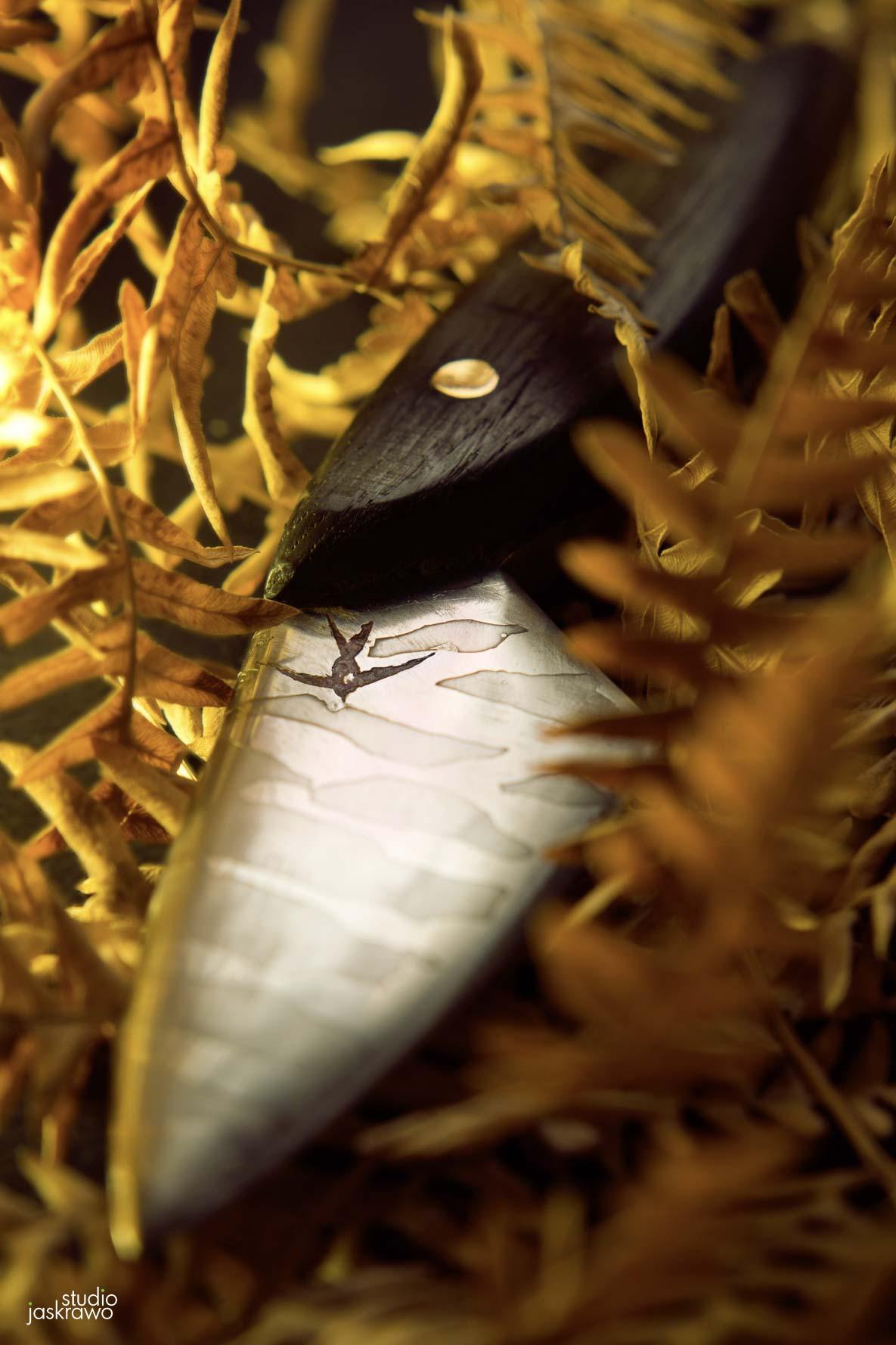 nóż z drewnianą rękojeścią leżący w paprotkach
