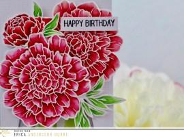Birthday shaker card with Erica