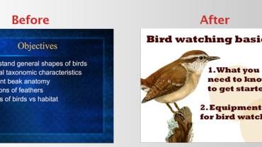 presentation slide before after