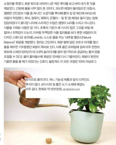 Article in Korean magazine about the