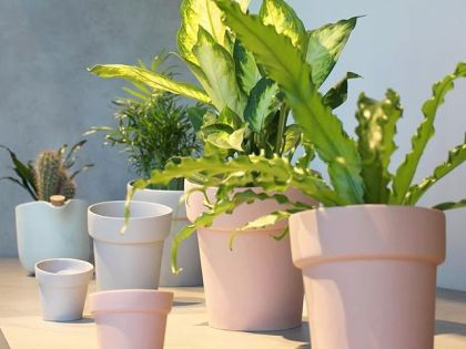 All flowerpots and vases are this month on display @waterdrinker_aalsmeer-watering
