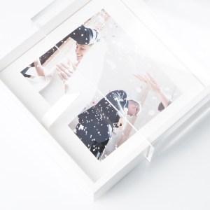 box plexi 0124