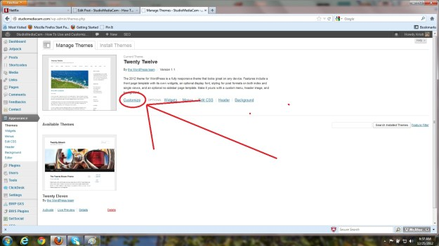screenshot of Customize Tab in Theme Twenty Twelve