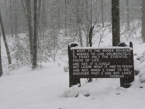 Sign at Thoreau's cabin site by binarydreams