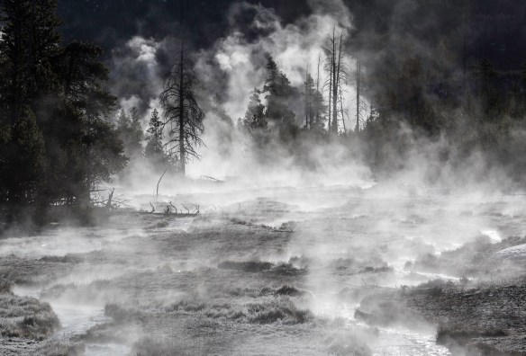 Frost & steam, Midway Geyser Basin by Neal Herbert