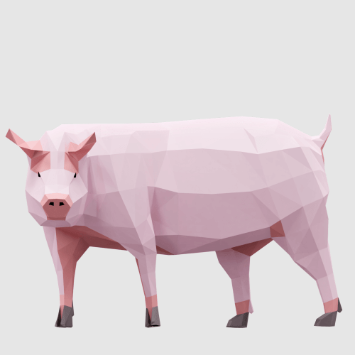 3D render farm pig lowpoly model