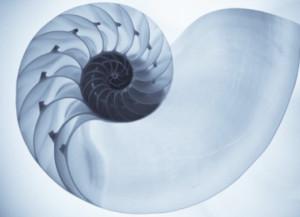 La Tecnica Osteopatica Biodinamica