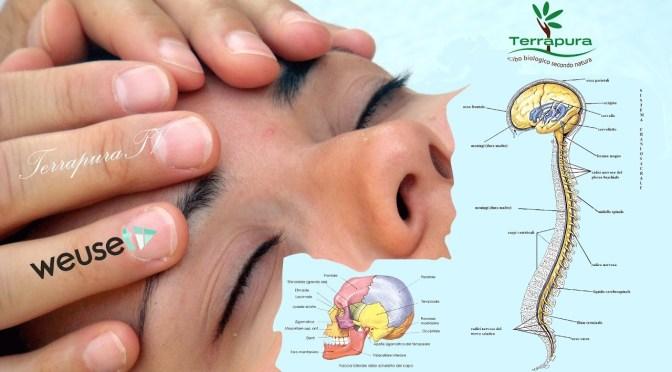 Cos'è l'osteopatia biodinamica