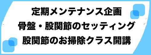 股関節お掃除クラスバナー.jpg