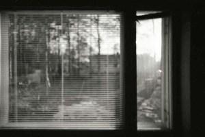 Window Finland 2004