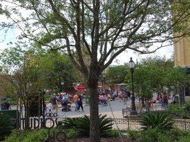 While guests may not notice immediately, Hollywood Studios HQ spotted new trees having been placed around the Park this week. Two new trees are now present at the exit of the Muppet Vision 3D attraction, with the largest planted overnight between the entrance of Muppet Vision 3D and Grand Avenue. Likewise, tree enthusiasts will be pleased that another new tree compliments the Grand Avenue's corner oasis Baseline Tap House landscape. Last but not least, ABC Commissary diners will notice an indoor palm tree makeover. Disney's Hollywood Studios. Photo by John Capos