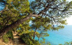 Hiking in Kassandra