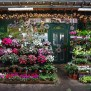 Paris Flower Shop Les Studios De Paris
