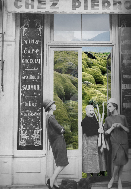 Natural Act Collages By Merve Ozaslan Cate St Hill