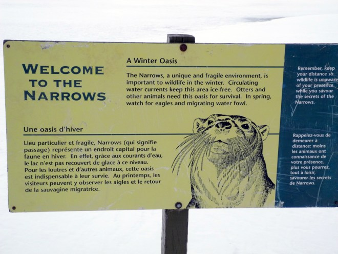 Otter Sign at Narrows marina