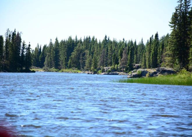 Grass River towards Loucks Lake