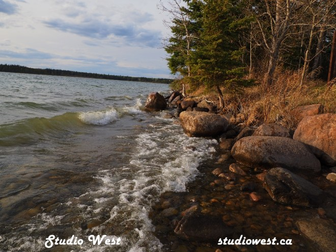 Shoreline at Greig Lake