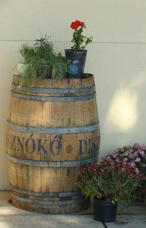 w Disznoko, Tokaj (foto Studio Wina)