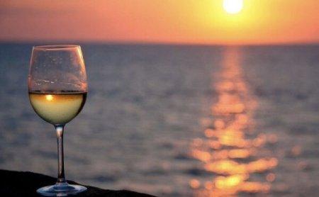 lato-i-wino_studio-wina
