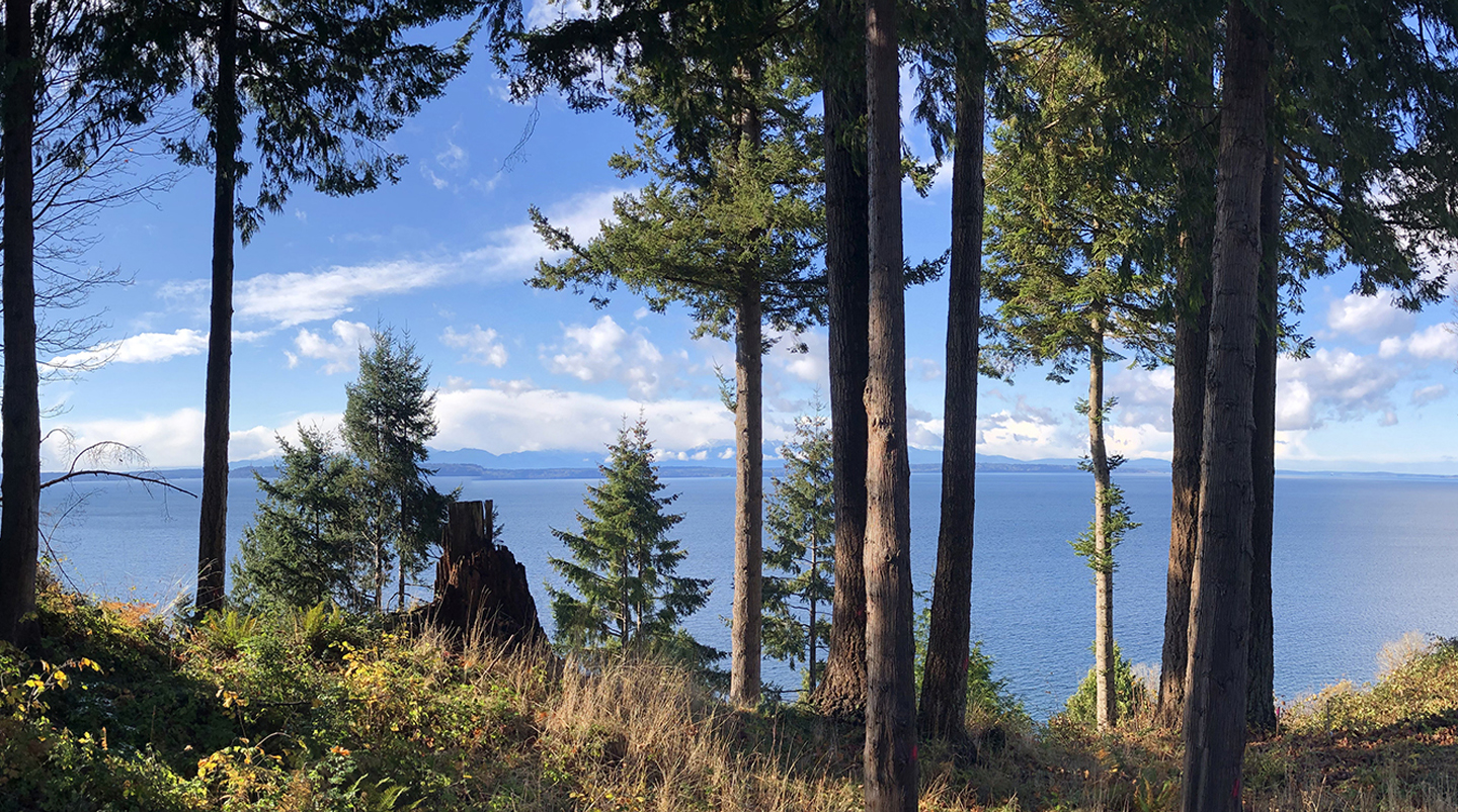 View looking out to Puget Sound from modern Edmonds custom home