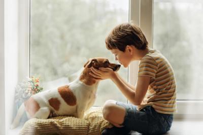 【慣用句】「犬の遠吠え」の意味や使い方は?例文や類語を雑学大好きwebライターが解説!