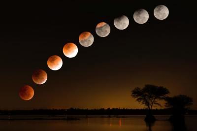 5分でわかる日食と月食!両者のメカニズムは?現役理系学生ライターがわかりやすく解説!