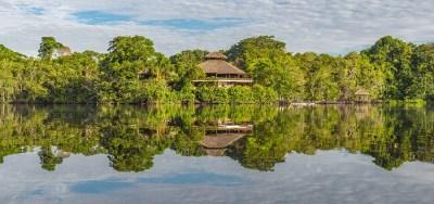 熱帯多雨林・亜熱帯多雨林の違いって?バイオームを現役講師が紹介