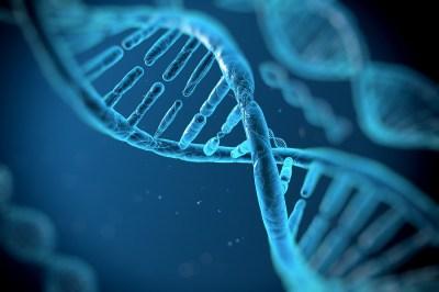 DNAとRNAとは?構造と働きを理系ライターがわかりやすく解説