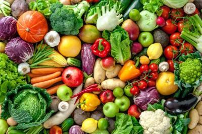 5分で分かる「三大栄養素の消化」消化の仕組みを知ろう!東大生物学科卒が分かりやすく解説