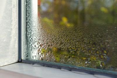 日常的に使われている「湿度」の正確な意味を理系ライターが丁寧に解説