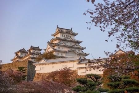 「徳川千姫」を女性史に詳しい歴女が解説!運命に翻弄されつつも強く生き抜いた彼女の生涯とは