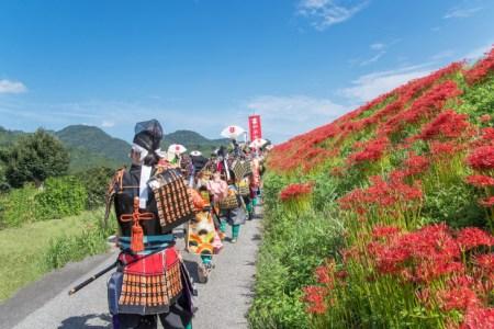 江戸の歴史を学ぶなら必須「参勤交代」を元塾講師が分かりやすく解説!