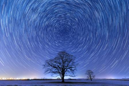 5分でわかる「北極星」ってどんな星?北斗七星とどんな関係?科学館職員が解説!