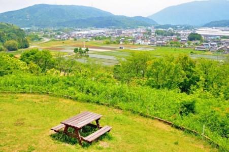 石田三成に過ぎたものと言われた大物家臣「島左近」をわかりやすく歴女が解説