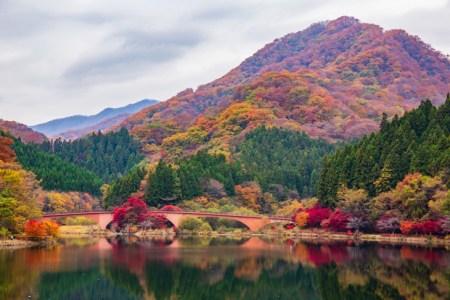 上信国境を守る巨大山城「松井田城」-歴史作家が教える城めぐり【連載 #24】