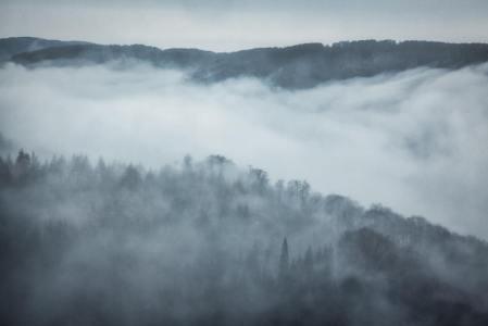 霧にはどんな種類がある?霧(きり)靄(もや)霞(かすみ)の違いを科学館職員が解説