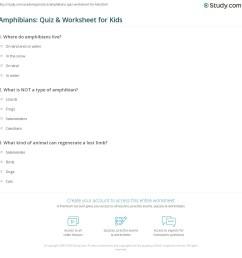 Amphibians: Quiz \u0026 Worksheet for Kids   Study.com [ 1169 x 1140 Pixel ]