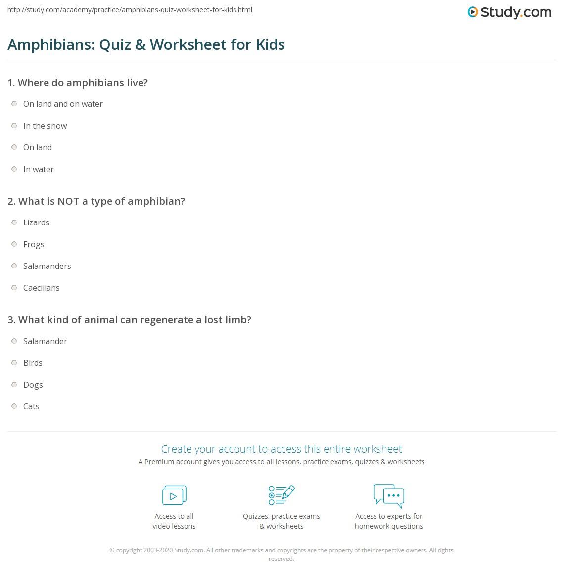 hight resolution of Amphibians: Quiz \u0026 Worksheet for Kids   Study.com
