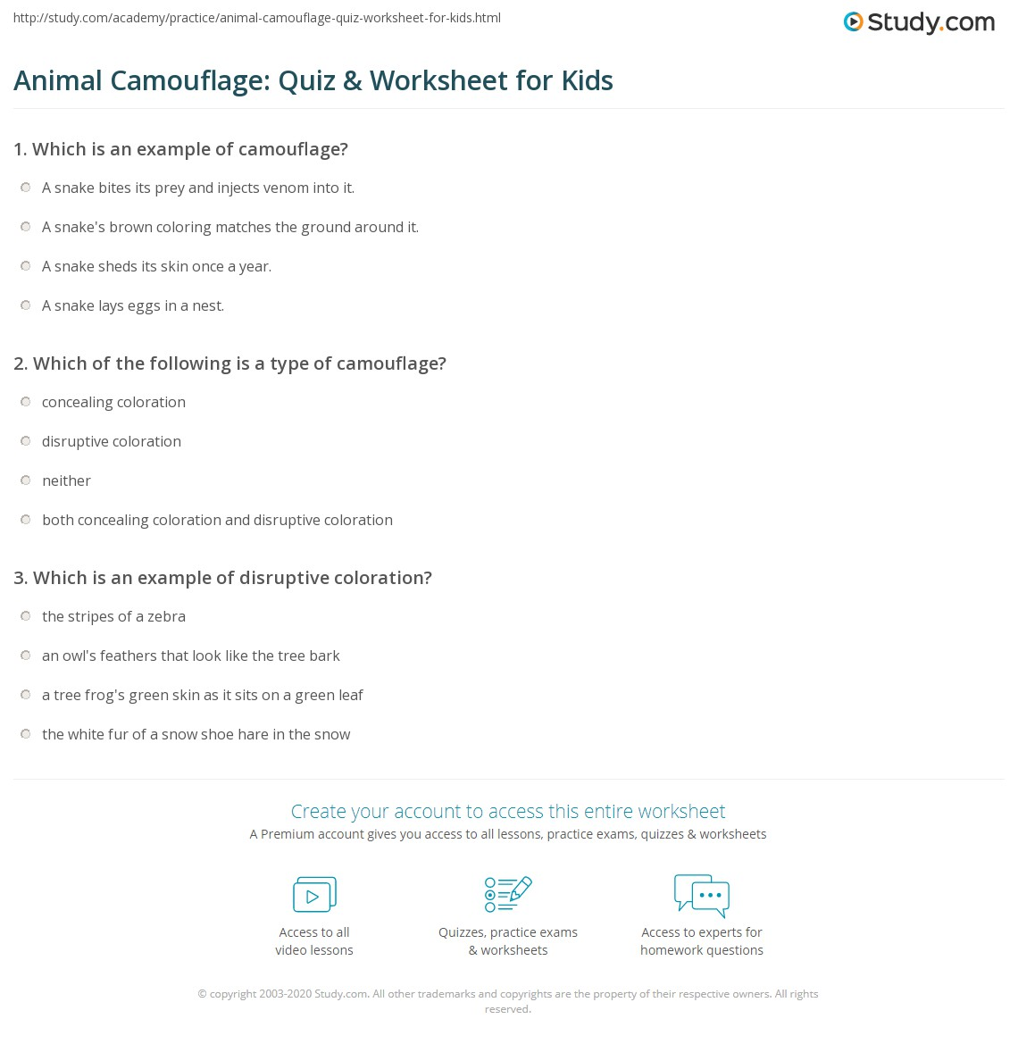 Animal Camouflage Quiz Amp Worksheet For Kids