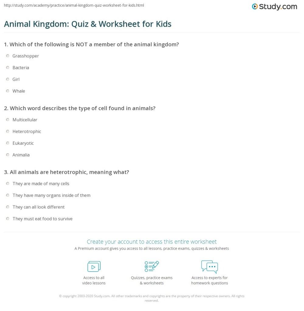 medium resolution of Animal Kingdom: Quiz \u0026 Worksheet for Kids   Study.com