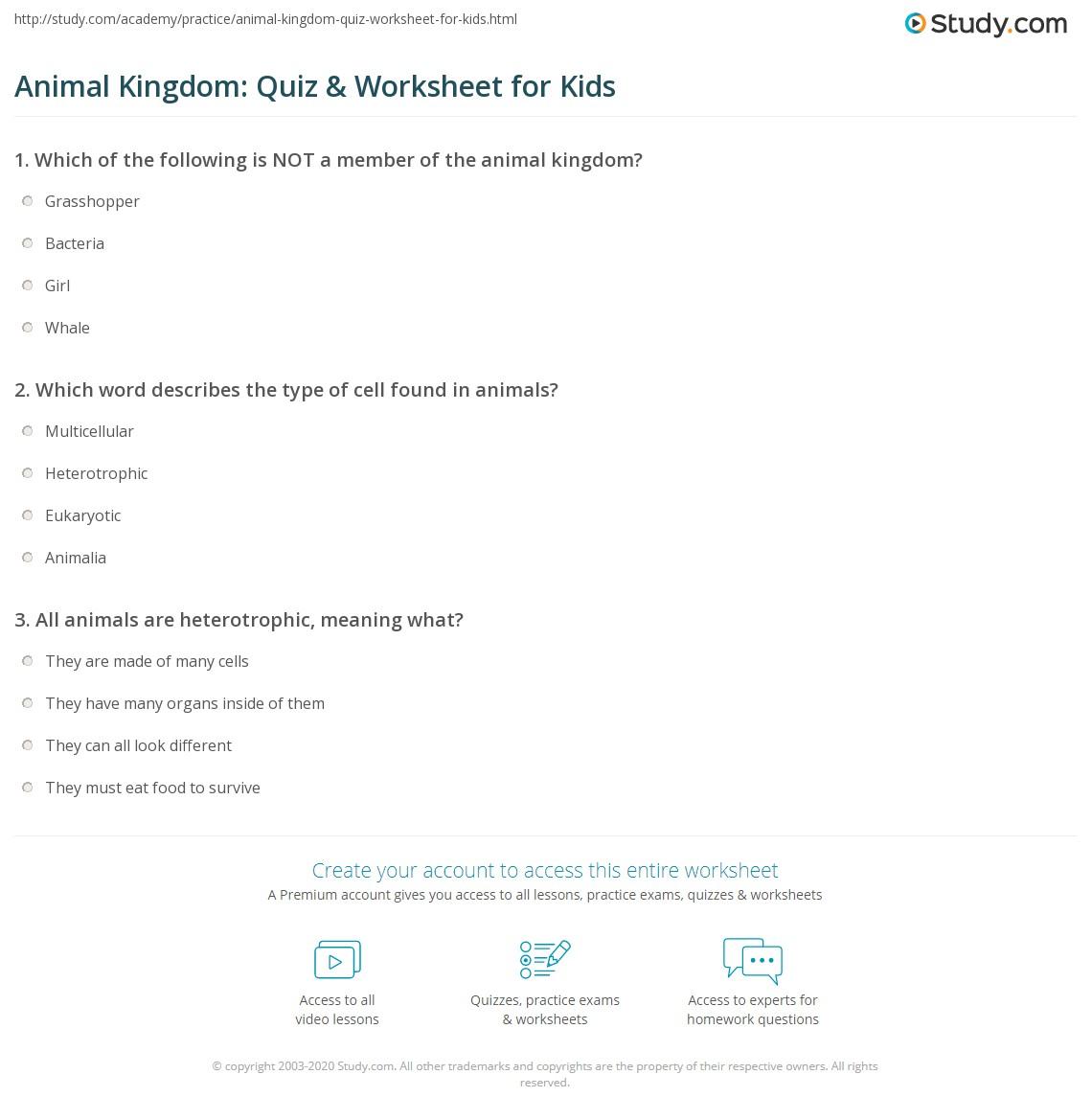 hight resolution of Animal Kingdom: Quiz \u0026 Worksheet for Kids   Study.com